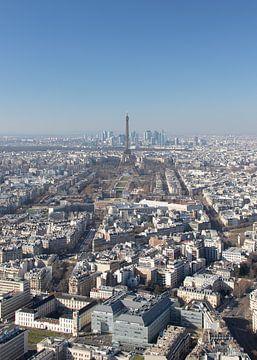 De daken van Parijs en de Eiffeltoren van