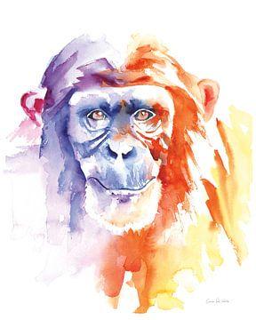 Chimpansee II, Aimee Del Valle van Wild Apple