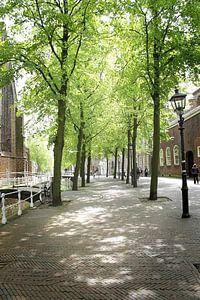 Oude Delft ter hoogte van de Oude Kerk van