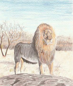 Zeichnung: Löwe von Jerzy Beerepoot