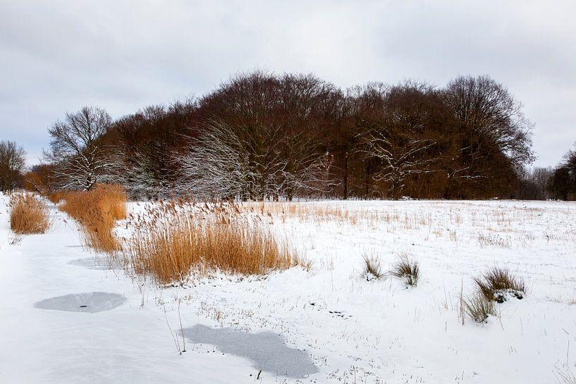 Bevroren sloot en sneeuw landschap in Rotterdam van Peter de Kievith Fotografie