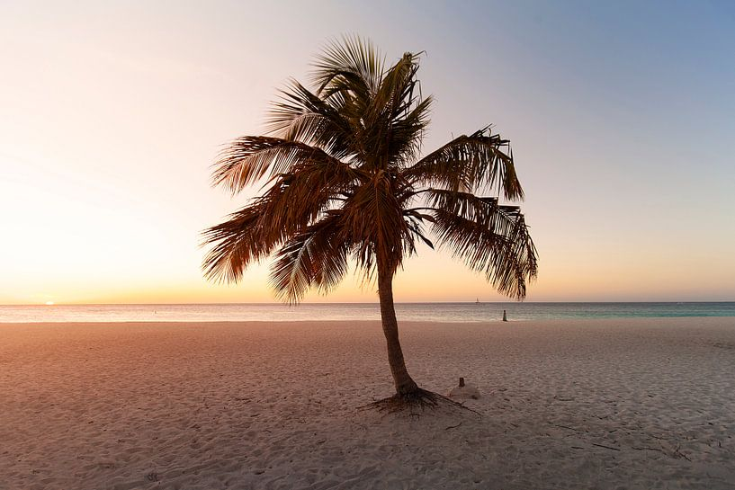Tropical Vibes van Claire Droppert