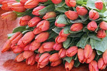Strauß roter Tulpen von gea strucks