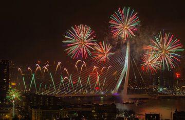 Rotterdam begint 2019 goed met een mooie vuurwerkshow van Arisca van 't Hof