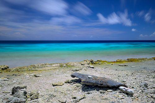Bonaire West Coast Rocks! van