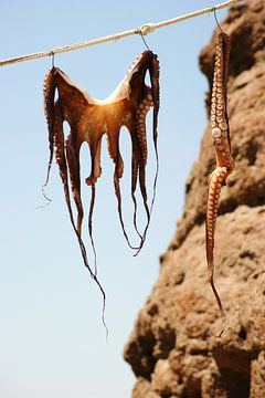 Calamares van Mariska Van Brustum