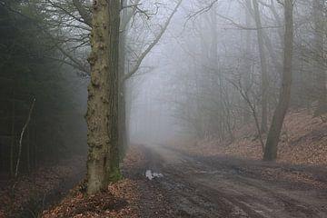 De Paasberg in de mist, mysterisch Achterhoek! van Henriëtte Kelderman-Makaaij
