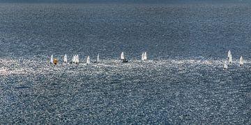 Zeilbootjes op zee in een strakke lichtbaan van de zon sur Harrie Muis