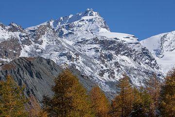 Findelntal mit Rimpfischhorn  Zermatt, Schweiz von Torsten Krüger