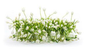 Nature morte des tulipes blanches sur Dirk Verwoerd