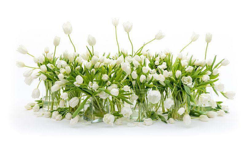 Tulpen Stilleven Wit van Dirk Verwoerd