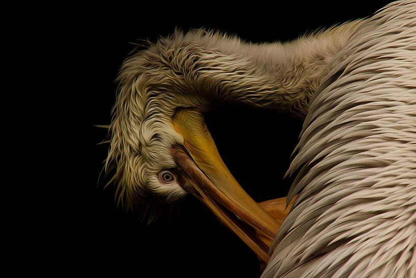 Pelikan von Gabriele Haase