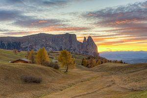 Herfst op de Alpe di Siusi van