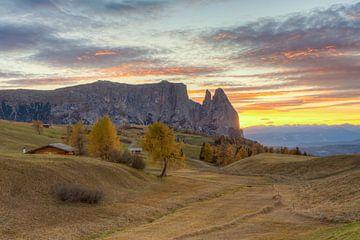 Automne sur le Alpe di Siusi sur Michael Valjak
