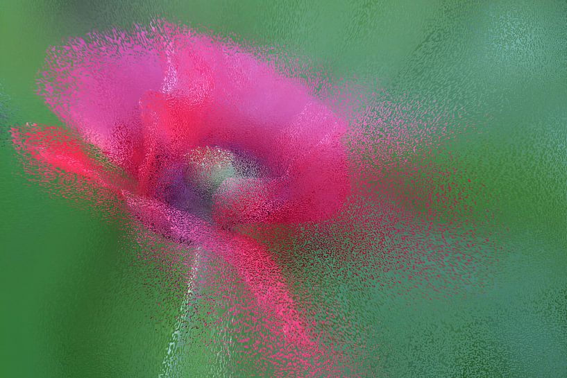 pink splashes van Yvonne Blokland