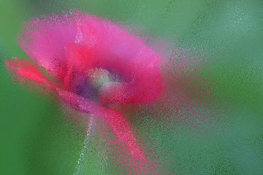 pink splashes