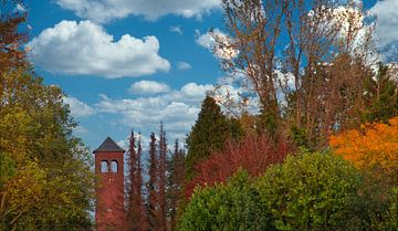 Blauwe luchten en herfst gekleurd gewas van JM de Jong-Jansen