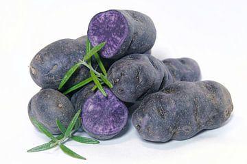 Pommes de terre de la variété Vitelotte sur Heiko Kueverling