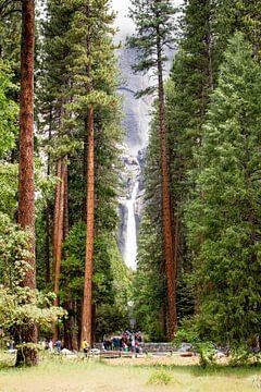 Yosemite waterval gezien tussen de bomen door. von martin von rotz