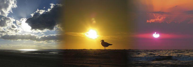 Triple Sunset van Harry Hadders