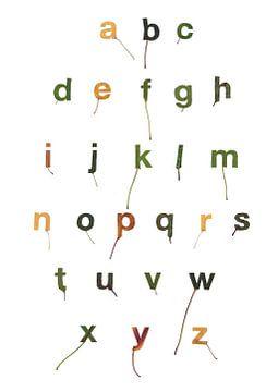 Bladletters binnenvorm alfabet van Twan Van Keulen