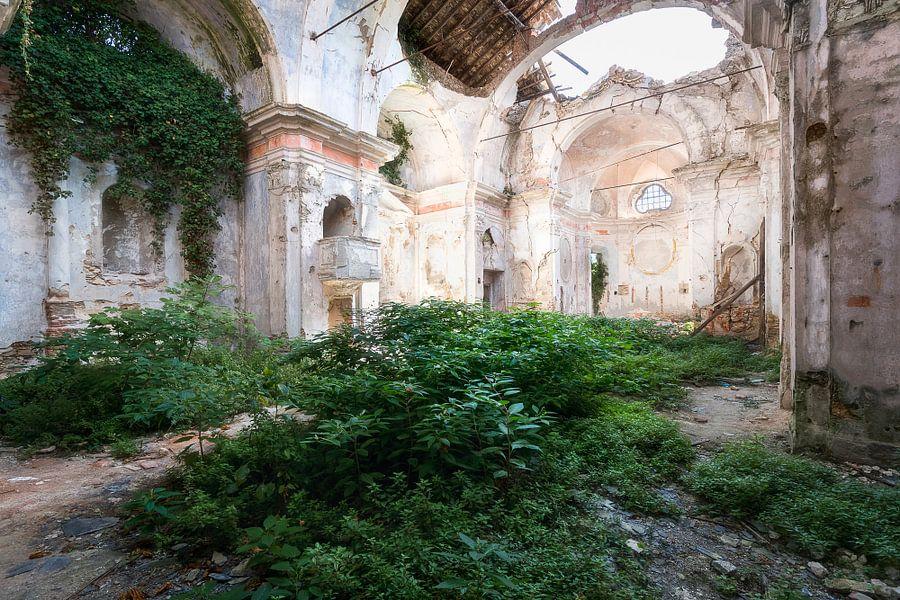 Verlaten Kerk met Planten. van Roman Robroek