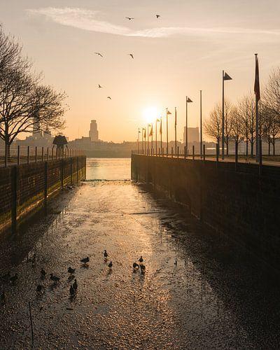 Zonsopkomst vanaf Linkeroever - Antwerpen van