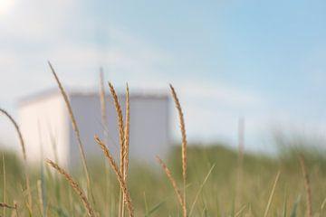 Helmgras en strandhuisje van Percy's fotografie