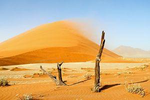 Sandsturm an der Düne 40 van