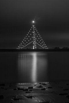 Grootste Kerstboom IJsselstein | Gerbrandytoren van Merijn van Schaik