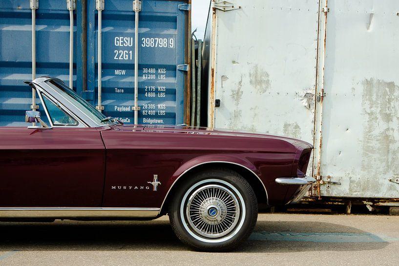 Mustang van marco de Jonge