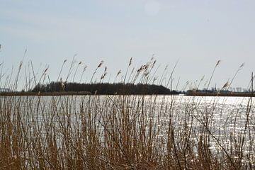 Zicht op natuurgebied Lauwersmeer bij Ezumakeeg van Mark van der Werf
