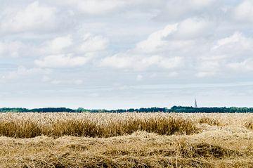 zicht op Klooster van Marnefoto .nl