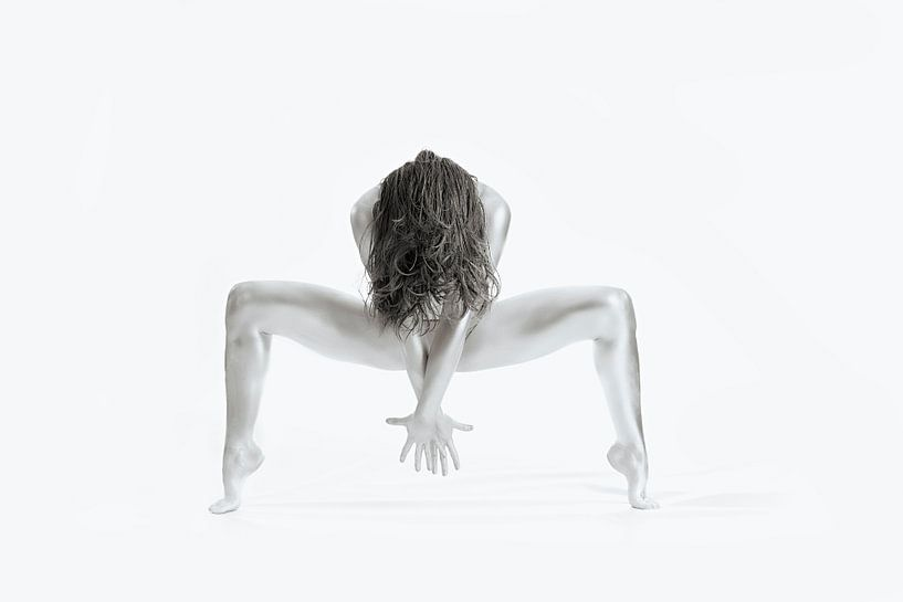 Sterk - Gymnastiek Series, Howard Ashton-Jones van 1x