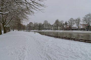 vijver park Meezenbroek van Francois Debets