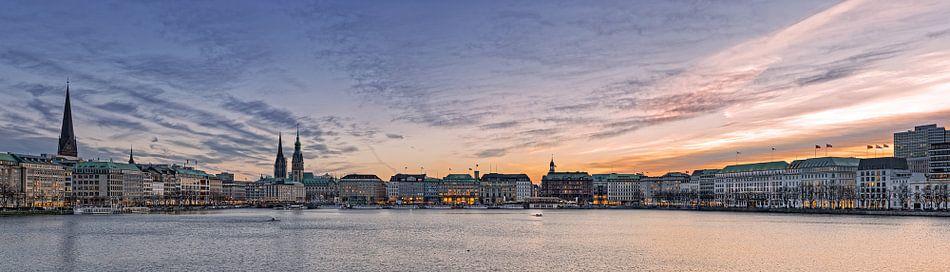 Alster Panorama von Dirk Thoms
