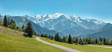 Zicht op de Mont Blanc vanaf het Plateau de Passy, Marlioz-l'Abbaye, Haute-Savoie, Frankrijk, van Rene van der Meer