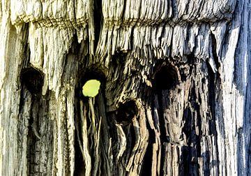 Kijkgaatje hout von Stef De Vos
