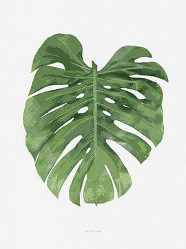 Botanical Monstera Leaf von Niels Eric Fotografie