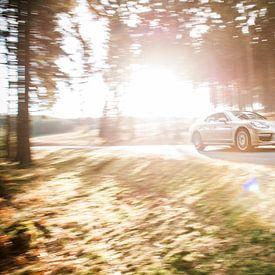 Porsche Panamera BMW M6 van Sytse Dijkstra