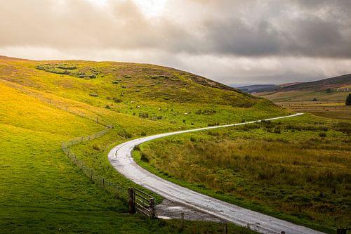 Travel on Schottisch roads van
