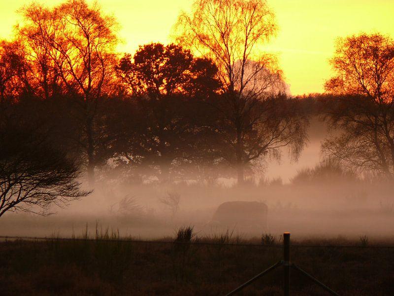 zonsondergang van erik boer