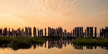 Friesland Waddenzee van Jan ter Burg