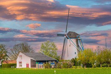 Windmolen in Avondrood.