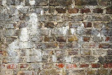 Brick wall - a bit of red van -  JOJO  -