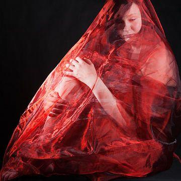 Woman in red van Han de Bruin