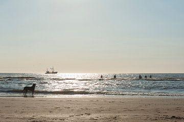 Fischerboot bei Sonnenuntergang von Wouter Moné