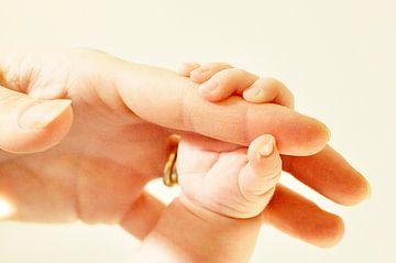 Hold my hand van Corina de Kiviet
