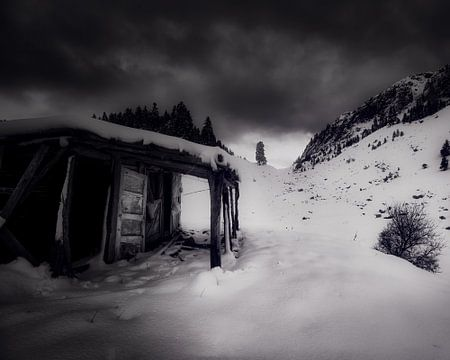 winterdroom