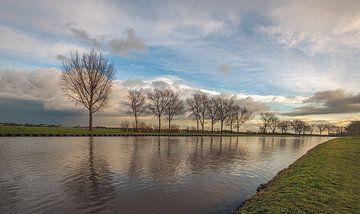 Rij kale bomen gereflecteerd in het water van Ruud Morijn
